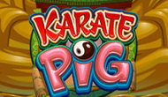 Karate Pig